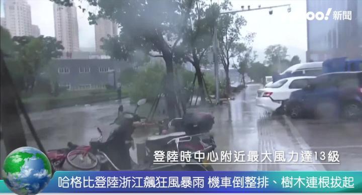 哈格比飆狂風暴雨 浙江路樹連根拔起