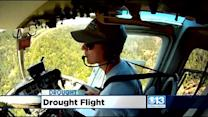 PG&E Goes Airborne To Find Drought-Stricken Trees Threatening Power Lines