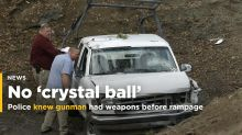 Police knew 'madman' had guns before killing rampage