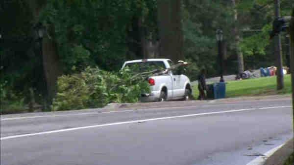 Woman hit by falling tree branch in Central Park