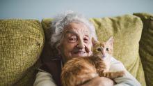 Con base en un estudio genético, científicos podrían vaticinar la longevidad