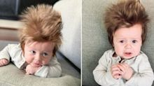 Meet Boston, the 4-Month-Old Going Viral for His Long, Spiky Hair
