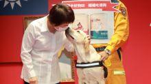 全國唯一 台中搜救犬鐵雄獲最高授階認証2線1星