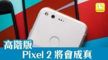 Google 確認 高階版 Pixel 2 將會成真