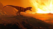 Combien de Tyrannosaurus rex ont-ils vécu sur Terre ?