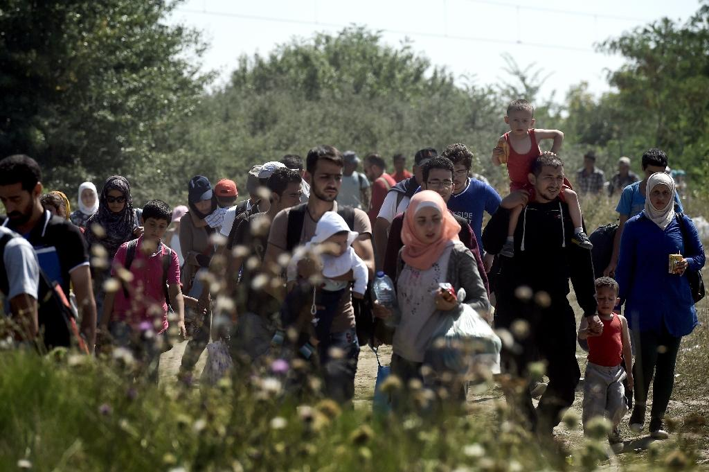 Syrian Refugees and migrants walk across a field as they head from Gevgelija in Macedonia to the Serbian border on August 30, 2015