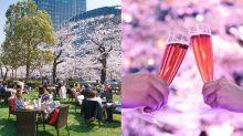 賞櫻季節將至,會去東京的你不要錯這個節目!