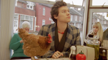 Harry Styles poses with chicken in new Gucci Fall Ad Campaign