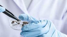 Brokers upbeat on Sage Therapeutics Inc despite economic uncertainty