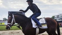 Art Collector is biggest threat to Authentic in Preakness