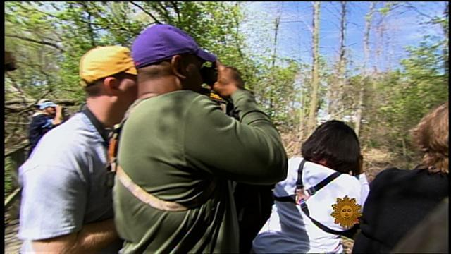 Call of the wild: Spring brings out birdwatchers