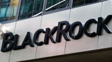 BlackRock bets on the circular economy with new fund