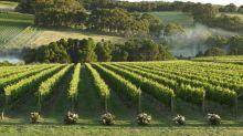 Why Victoria is Australia's best under the radar wine region