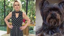 Sombrinha, cachorra de Ana Maria Braga, morre aos 11 anos