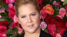 Moms scold Amy Schumer for returning to stand-up 2 weeks after giving birth: 'I've always wanted to be mom-shamed!'