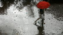 Expect showers for next 2 weeks, warm conditions on non-rainy days
