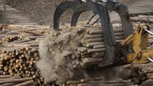 U.S. Pares Back Duties on Canadian Lumber in Softwood Spat