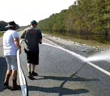 Interstate Left Covered In Fish After Hurricane Florence Floodwaters Recede