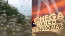 Nuvem de gafanhotos ameaça o Brasil e a internet teme fim do mundo