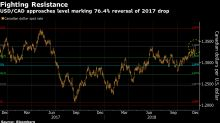 Triumphant Loonie Bears Face Hurdles to Additional Gains