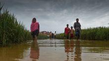 China to help resolve Rohingya crisis: Bangladesh