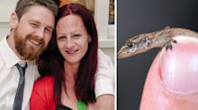 Australian man dies days after being dared to eat a gecko