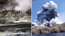 Deadly NZ volcano eruption 'not a total surprise', expert says
