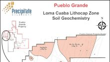 Precipitate Identifies Several Multi-Element Soil Geochemical Anomalies at the Pueblo Grande Gold Project in Dominican Republic