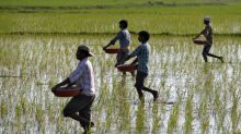 Exclusive: India likely to overshoot fertiliser aid bill by 300 billion rupees, banks may chip in - sources