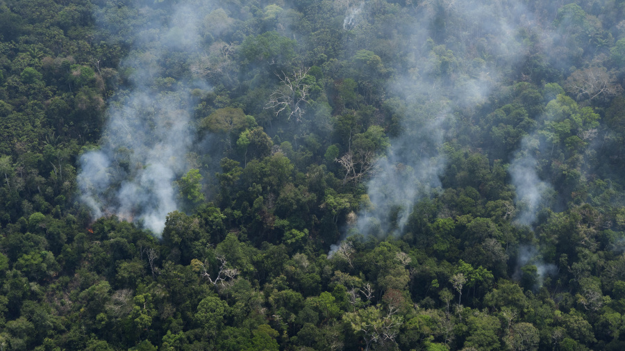 Brazil sends army to fight Amazon rainforest fires