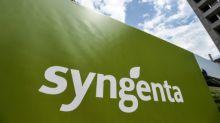 Syngenta pagará USD 1.500 millones en EEUU por transgénicos no aprobados en China