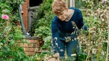 Take notes and get inspired: jobs for September in the garden