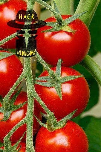 9 Secrets For Growing Killer Tomatoes (Hint: You'll Need Some Eggs)