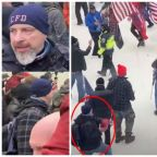 Retired Firefighter Arrested for Allegedly Hurling Fire Extinguisher at Cops During Capitol Riots