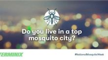 Terminix® Releases Top Mosquito Cities by Consumer Search Trends