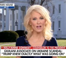 Kellyanne Conway Melts Down Under Grilling by Fox News