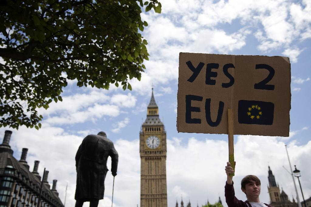 While a majority in Scotland, Northern Ireland and London voted for Britain to remain in the EU, a majority in nine other UK regions voted for Britain to leave (AFP Photo/Justin Tallis)