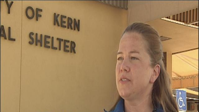 KCAC director terminated