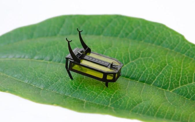 USC's micro-robot RoBeetle