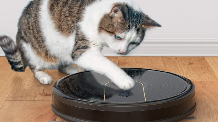 Clean your floors without lifting a finger (or paw) — the Eufy robot vac is $80 off, today only: 'Your new BFF'