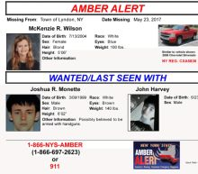 12-Year-Old Girl Abducted by Teen Boys In 'Imminent Danger'