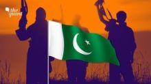 Terror In J&K 'Reined In', So Pakistan Must Take 'Virtual' Route