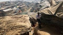 Amnesty says Rohingya crisis consequence of society 'encouraged to hate'