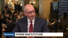 Fannie Mae CEO Says Conservatorship Wasn't Long-Term Solution