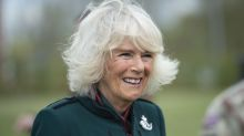 Camilla says she's had 'half-hug' with grandchildren after being 'doubly jabbed'