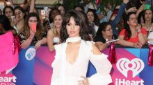 Camila Cabello had 'flirtation-ship' with famous guy at Grammys party
