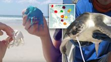 'Act before it's too late': The dangers of helium balloons to sea turtles