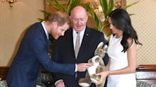 97 toys, 118 books and 10 blankets: Harry and Meghan's baby gifts revealed