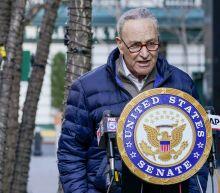 Fate of Biden agenda rests with Schumer in 50-50 Senate