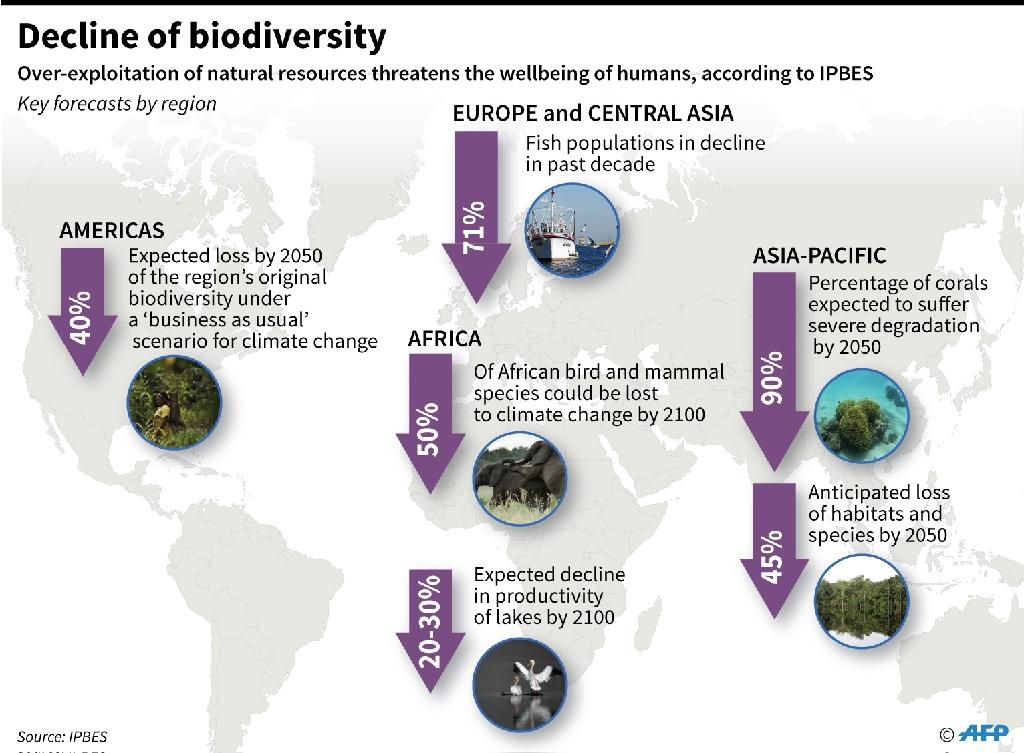 Dire biodiversity forecasts for regions worldwide by the Intergovernmental Science-Policy Platform on Biodiversity and Ecosystem Services (IPBES). (AFP Photo/Anella RETA)
